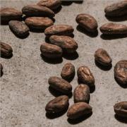 chocolate beans image